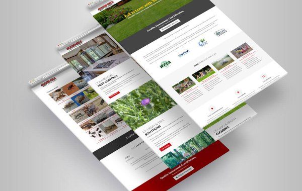 Website Design | Clean Kill Pest Control | Iron Mountain, MI area